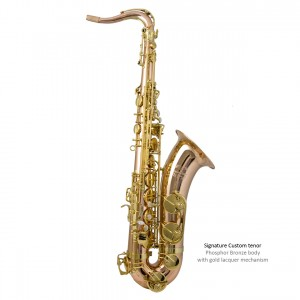 SC Custom tenor - Phosphor broze model